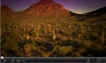 Click the link to see why Tucson is consistently rank as a top US destination!